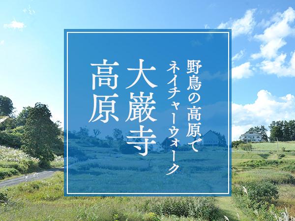 〈大巌寺高原〉野鳥の高原でネイチャーウォーク
