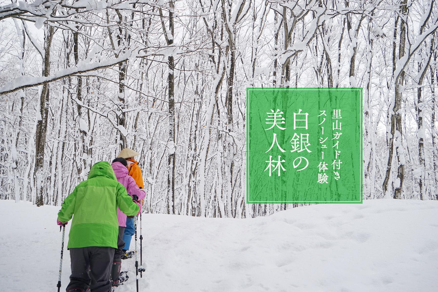 〈白銀の美人林〉里山ガイド付きスノーシュー体験