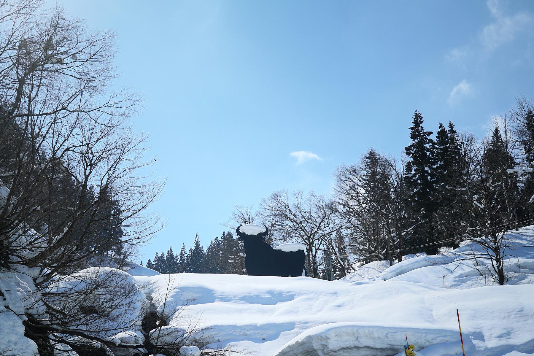 冬-2ブラックシンボル